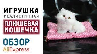 Кошка игрушка с Алиэкспресс Купить Цена Обзор Kawaii Cat