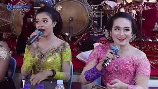 Live delay '' SUPRA NADA '' // BAP audio // SANJAYA multimedia