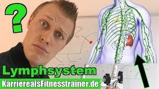 Alles zum unterschätzten & unbekannten Lymphsystem einfach erklärt!