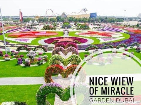 Nice View Of Miracle Garden Dubai 2020