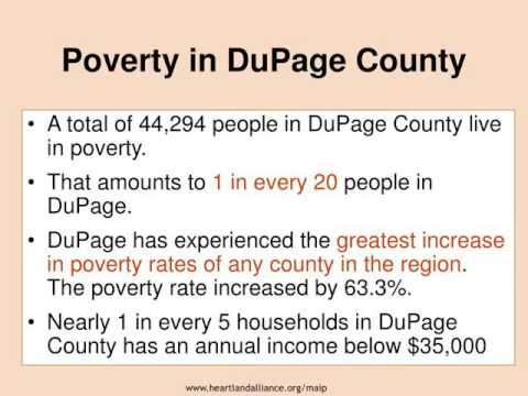 The 2008 Report on Illinois Poverty