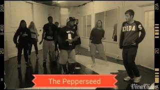 Hip Hop Social Dances - The Pepperseed