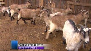 В Одесском зоопарке утепляют помещения для животных