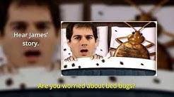 Bed Bug Exterminators Denver | Beeline Pest Control