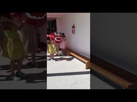 Chinese New Year at Alexander Montessori School