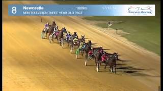 NEWCASTLE - 17/12/2014 - Race 8 - NBN TELEVISION THREE YEAR OLD PACE
