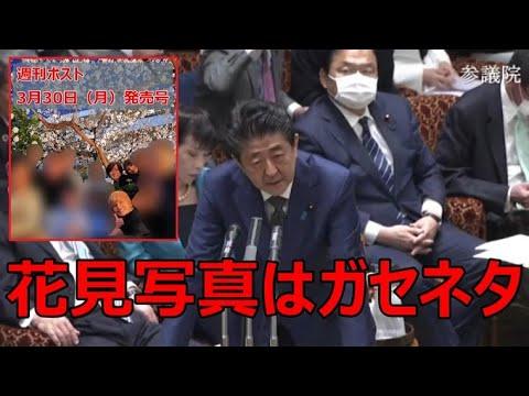 令和2年3月25日 昭恵夫人の花見写真はガセネタだった!総理「都内レストランでの記念写真、公園で花見をした事実はない」