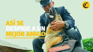Así se despide a un mejor amigo: el pase a retiro de los canes de la Marina de Guerra