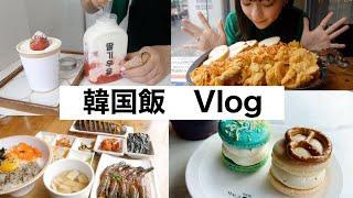 【韓国】新大久保で爆食い!食べ歩きするつもりがもう動かれへん・・・【vlog#62】