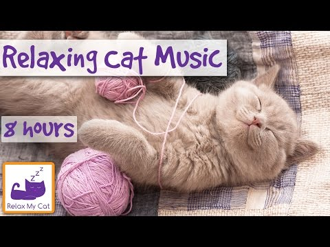 Extra Long Video of Sleep Music for Cats! Help Your Cat Sleep With 8 Hours of Relaxing Music