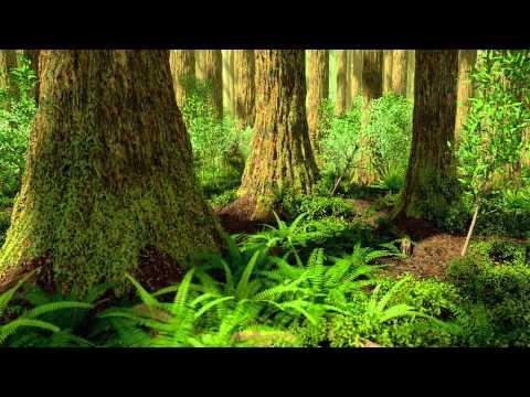 Late Eocene redwood forest, Florissant National Mounument, Colorado