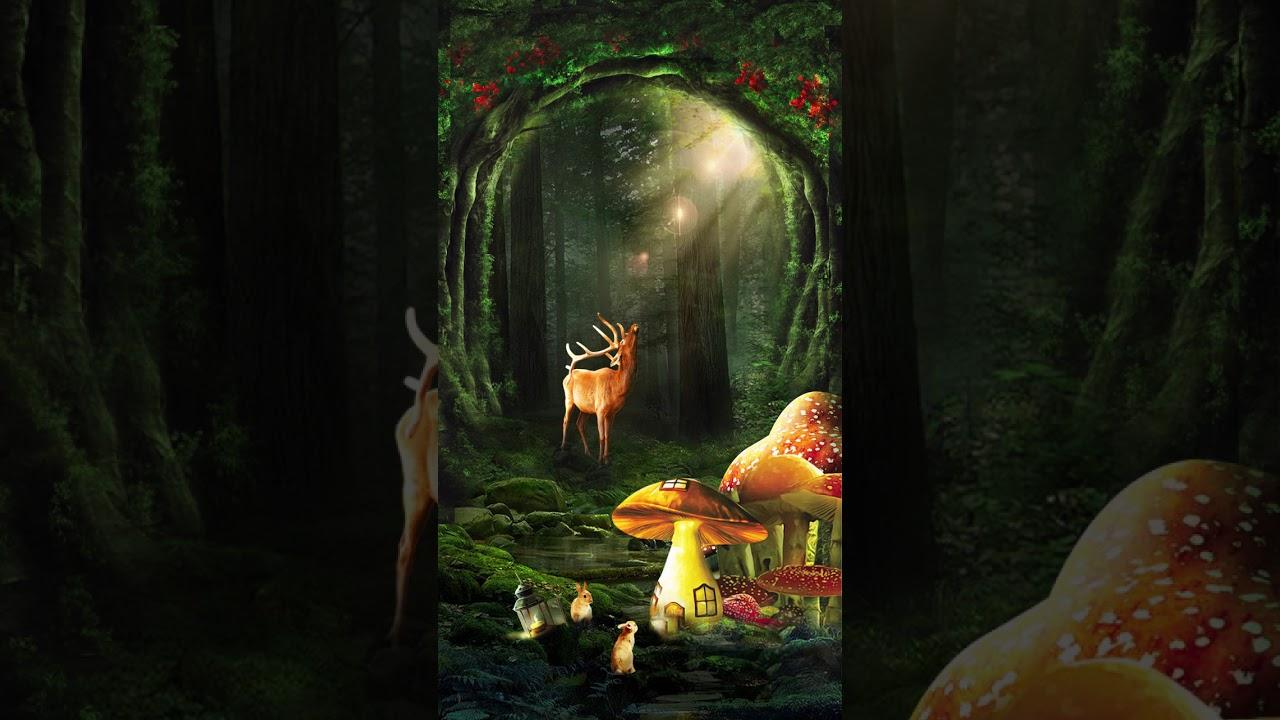 Dynamic dream forest whisper