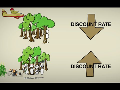 Cost-Benefit Discounting