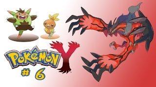 Pokemon Y - Part 6 - Supertraining mit Ryole - Let´s Play Pokemon Y
