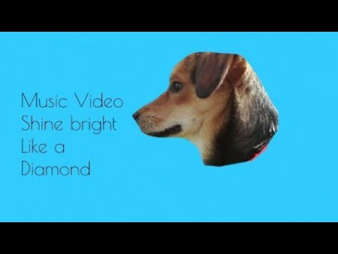 💎Shine bright Like a Diamond💎 (Mini Music Video)