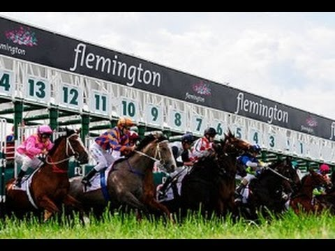 Melbourne Cup 2013 (Full Race)