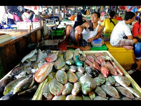 A Quick Tour around the Jimbaran Fish Markets | Bali, Indonesia