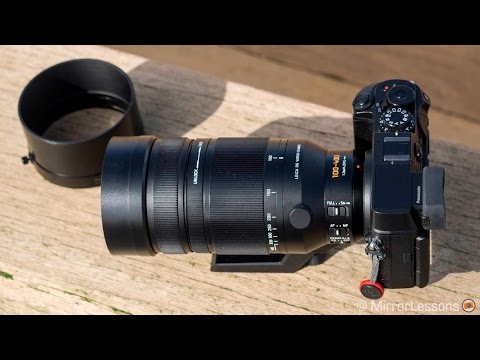 Panasonic 100-400mm review for wildlife photography