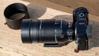 panasonic 100 400mm review for wildlife photography