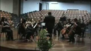 Serenata para Cuerdas Op.48 Piotr Ilich Tchaikovski