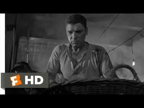 Birdman of Alcatraz (2/11) Movie CLIP - Prison Fight (1962) HD
