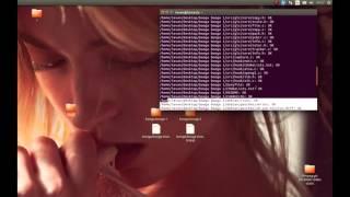 Linux/Ubuntu antivirus - Clamav and Clamtk guide [Boosted volum]