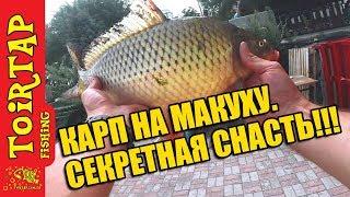 МАКУШАТНИК! ЛОВЛЯ КАРПА!  Советы начинающим рыбакам!!!