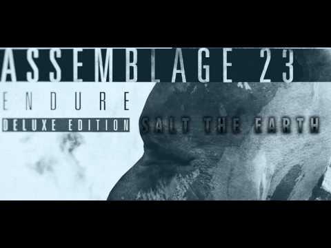 Assemblage 23 - Endure Deluxe Edition (Full Album)