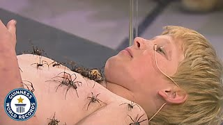 Most spiders on the body - Guinness World Records
