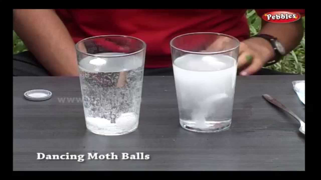Dancing Moth Balls Science Experiments Science Projects