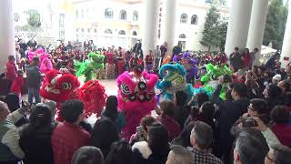 Far East Dragon Lion Dance @ Grand Century Mall 2019 Year of the Pig