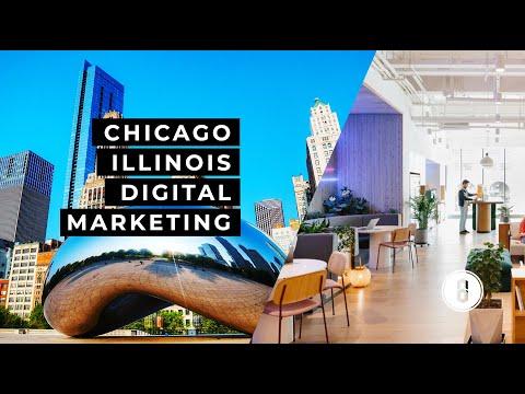 Top Digital Marketing Agency in Chicago, Illinois   Marketing & Advertising   Brandastic