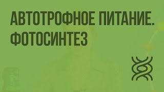Автотрофное питание. Фотосинтез. Видеоурок по биологии 10 класс
