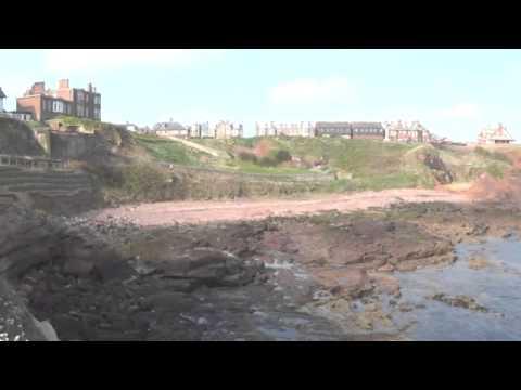 Dunbar cliffs, East Lothian.