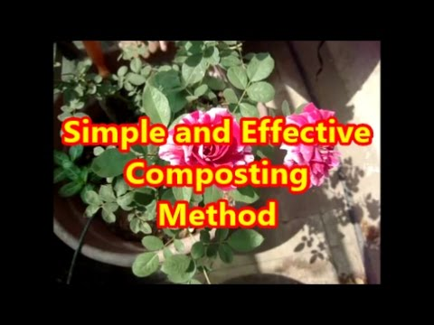 How to compost || Method 1-Direct composting || Simple and effective method