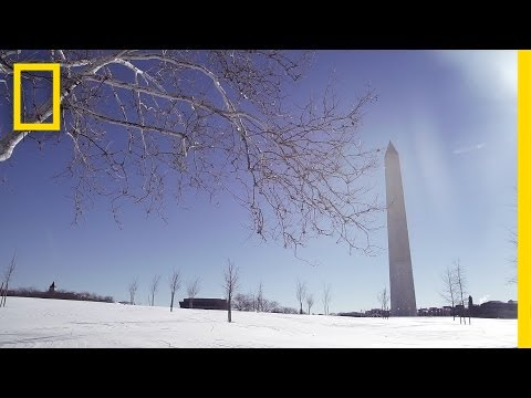Beautiful Scenes From the Snowstorm in Washington, D.C. | National Geographic