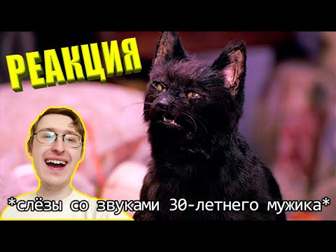 If cats could talk. Salem the cat, an ordinary domestic cat (Funny voice acting) TheNafig Reaction