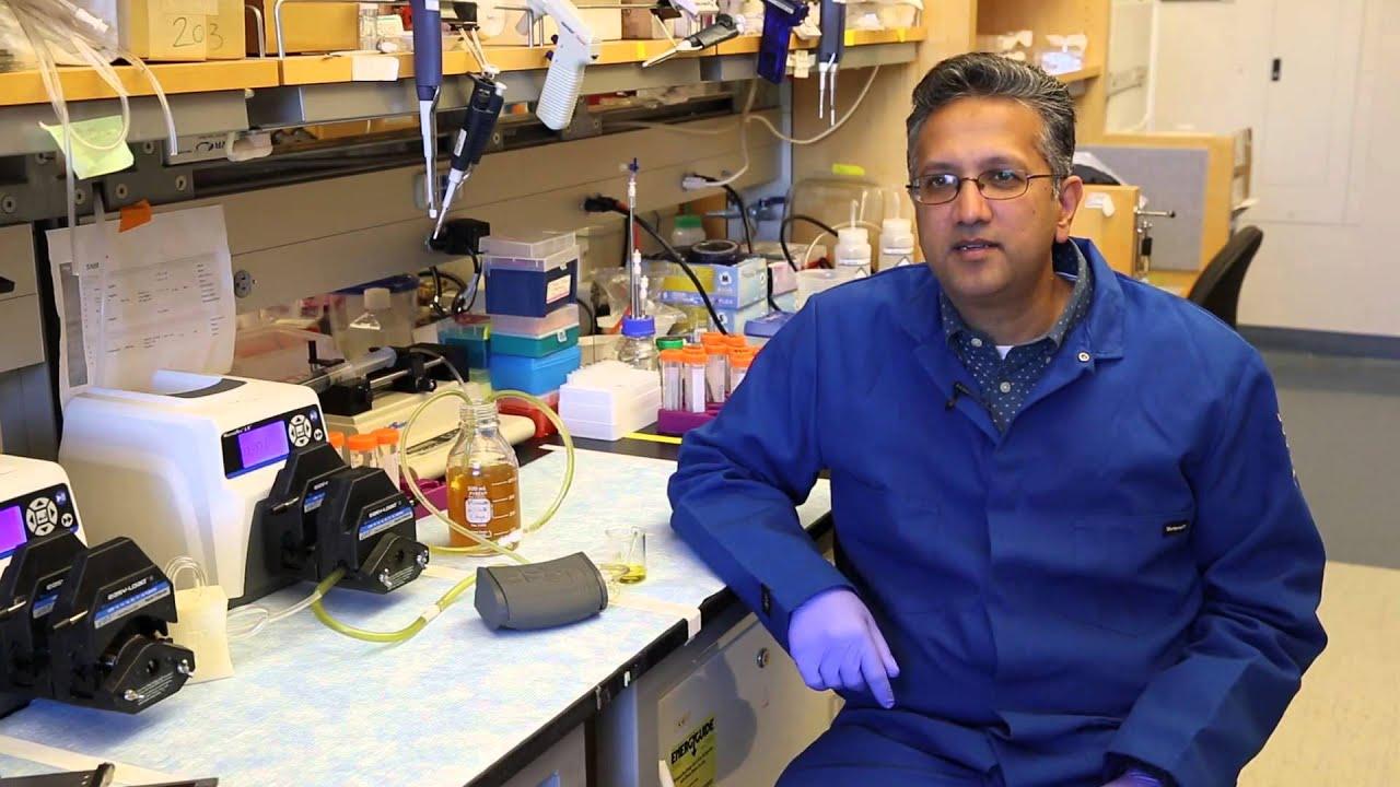 Transplant Surgery - Shuvo Roy, Ph D