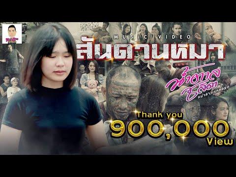 สันดานหมา - น้ำตาล ชลิดา [ OFFICIAL MV ]