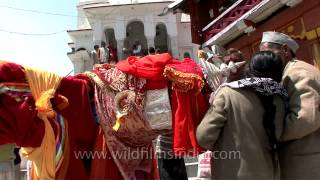 Traditional rituals being performed by the chief priest of Gangotri