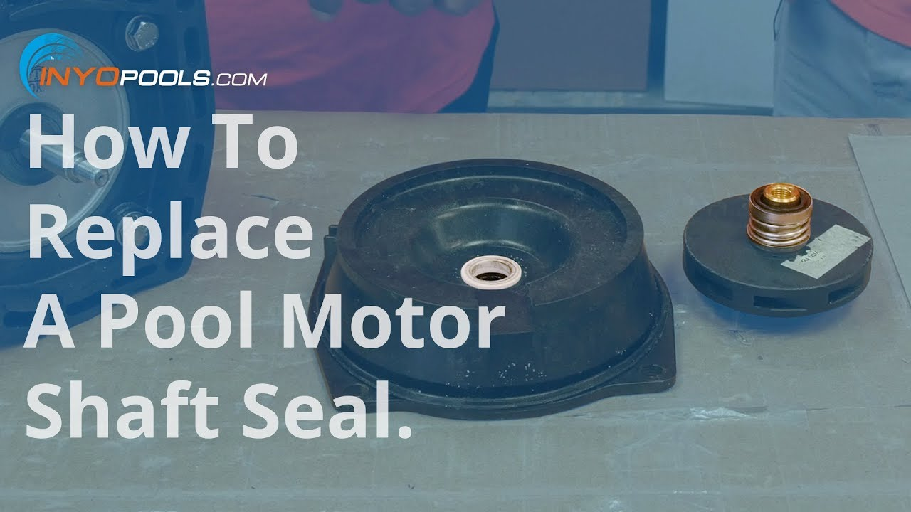 How To Replace A Pool Pump Motor Shaft Seal Youtube