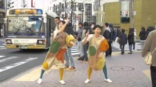 こうじモコモコ!みんなで踊ろう! 和食を支えている縁の下の力持ち「こ...