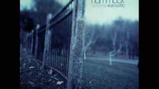 Hammock - Winter Light