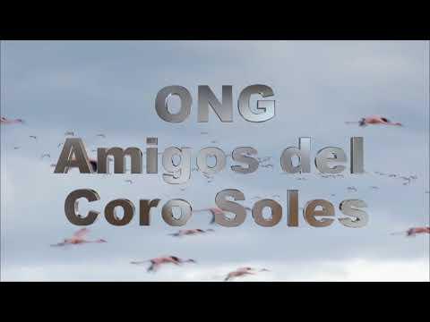 Coro Soles  28 años ONG SolRoMI 2da Edición