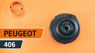 Peugeot 607 Sedanas techninė priežiūra - videopamokos