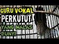 Perkutut Lokal Gacor Suara Besar Pikat Suara Burung Perkutut  Mp3 - Mp4 Download
