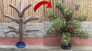 Creative Garden Ideas | DIY beautiful Portulaca Mossrose plant shaped garden from plastic bottles