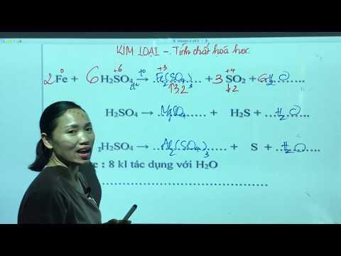 Tính Chất Hóa Học Của Kim Loại - Đại Cương Kim Loại - Hóa 12