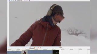 Почему ролик с медведем и сноубордисткой - фейк
