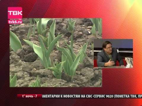 Общественный транспорт Красноярска [OTKrsk]